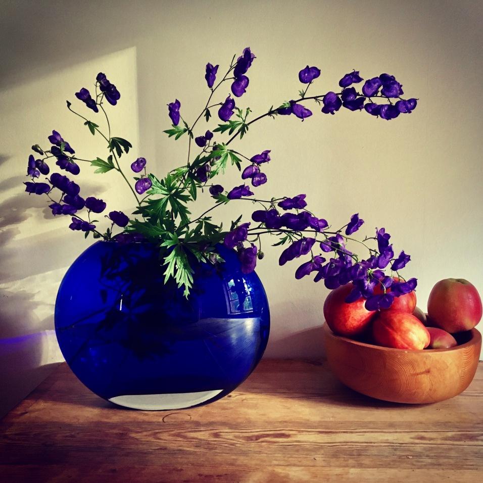 pexels-purpleflowers-718760