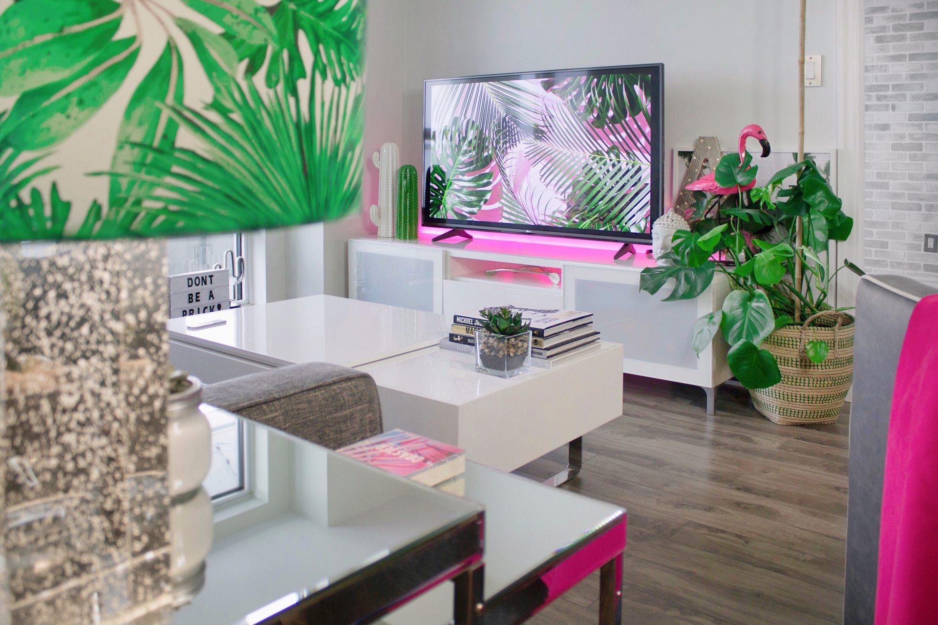 apartment-books-cactus-1046639